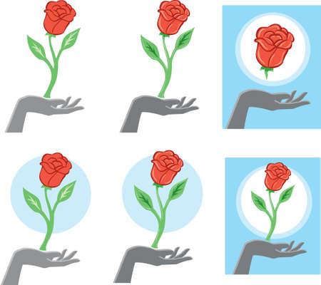 Flower hand Illustration