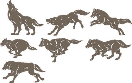 실행 늑대 일러스트