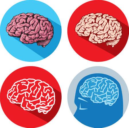 Brain icons Stok Fotoğraf - 27452797