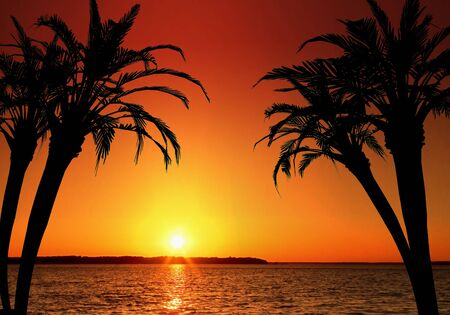 Illustratie van een tropisch eilandparadijs. Perfect voor vakantie- en bestemmingsconcepten, en nog veel meer! Stockfoto