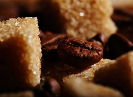 Coffee bean between two brown sugar cubes. Natural morning sunlight. photo