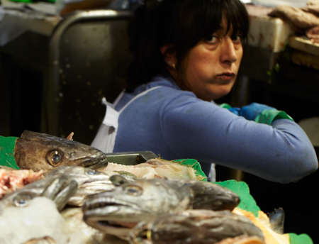 shop for animals: BARCELONA - MAY 26  The fish monger lady at the market, looking at the camera on May, 26, 2012 in Barcelona, Spain  Editorial