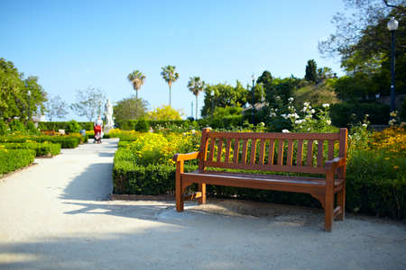 Bench in the park in Barcelona   photo