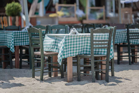 A few tables with checkered clothes, chairs, standing at the beach cafe, right on the sand
