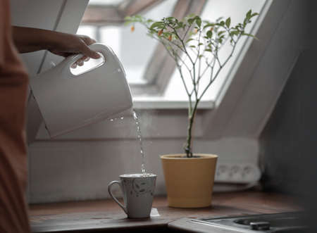 Hot steaming water is flowing from the electric kettle to the cup, standing on a wooden kitchen countertop. The kettle is being held by a female hand. There is a lemon tree in a pot behind the cup and a window on the inclined wall