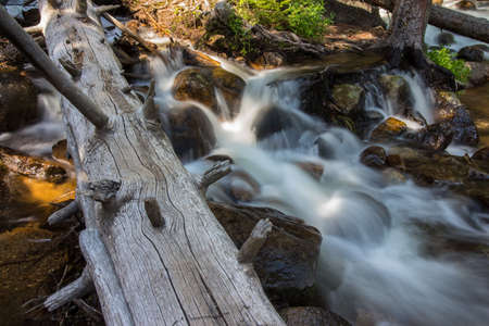A log lays in a quiet stream in the Rockies. Stock Photo