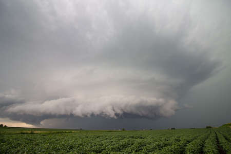 A supercell thunderstorm spins over a bean field in Iowa.