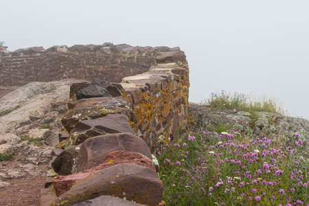 A stone wall next to pink and white flowers on a foggy day.