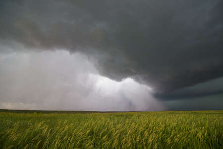 Supercell thunderstorm passes near a wheat field, releasing an torrent of rain and hail.