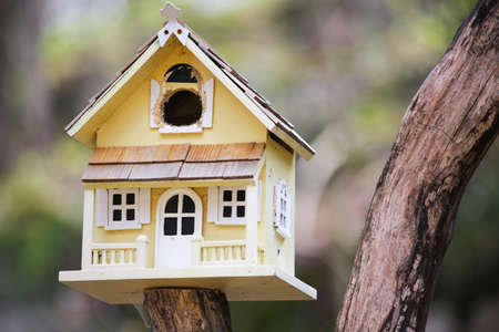 Cute little bird house at the cottage reminds me of a little victorian guest cottage for the birds Stock Photo