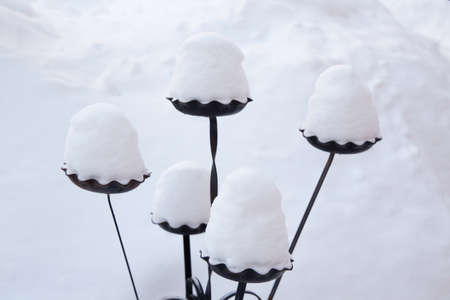 이 단조로운 정원 장식에 쌓인 눈이 쌓입니다. 캐나다의 전형적인 겨울