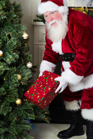 pere noel: Santa Claus looks up as he is placing a wrapped present under the Christmas tree Stock Photo