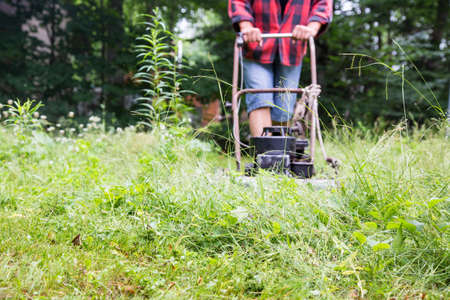 weed: Weekend warrior hacks through a field of weeds, trying to get the lawn back under control at the cottage, using an ancient old lawnmower