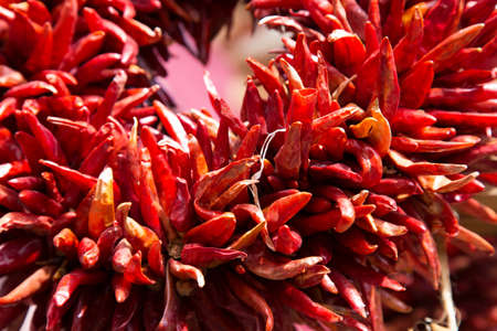 chiles secos: Close up of Ristras, the iconic dried chili arrangements that hang everywhere in Santa Fe, NM