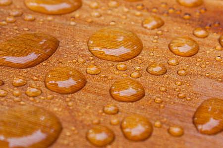 Granos del agua en la cubierta de madera de cedro en la casa después de una lluvia de primavera.