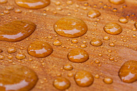 water beads on the cedar wood deck at the cottage after a spring rain.