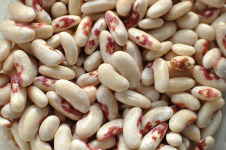 blotched: Scattered white motley haricot beans. Top view