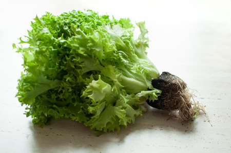 Bos van ruwe organische groene friseesalade met wortels op houten lijst. Selectieve aandacht.