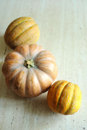 tradition: Halloween punpkin and melons background with empty copy space. Selective focus and bokeh. Stock Photo