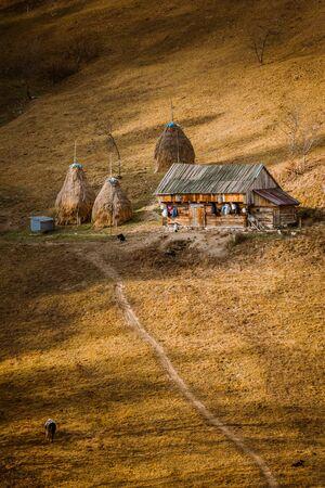 Vertical autumn landscape from Magura village, Brasov, Transylvania, Romania with a barn and haystacks