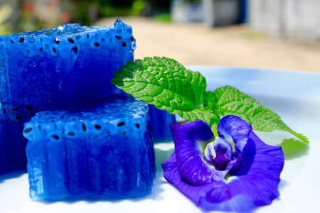 pea shrub: Thai jelly and butterfly pea flower