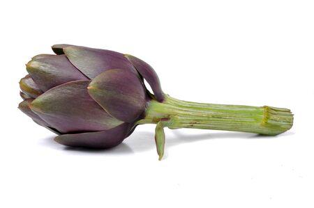 nutritive: Isolated artichoke on white background