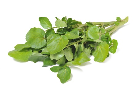 Bunch of watercress isolated on white background.
