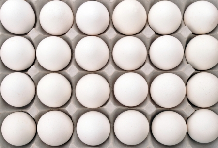 Close up of white packed eggs