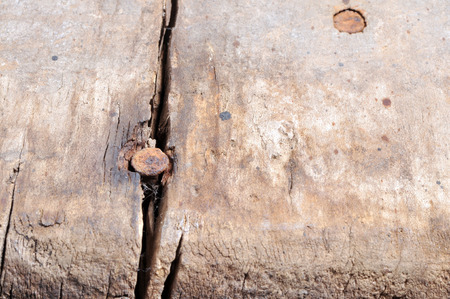 Rusty nails in damaged wood