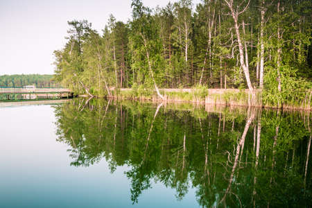 Forest reflextion in a lake water with a gangway on horizont