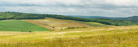 Summer in the fields of Bashkortostan in Russia