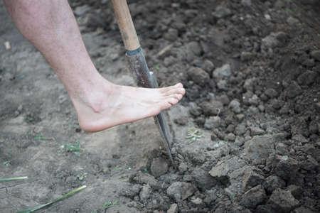 Empty Foot on Schovel Breaking Groung in Garden photo