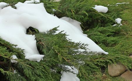 unexpectedness: nieve en el verano