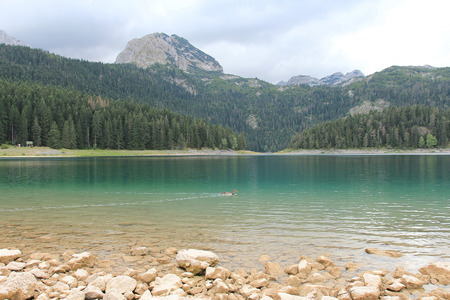 montenegro: Montenegro,Durmitor