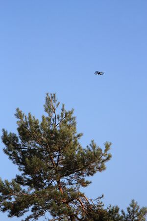 Drone flying over forest amid blue sky Фото со стока - 133344142