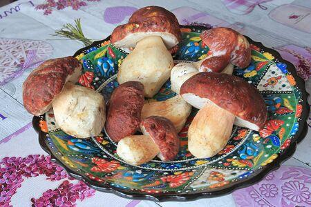 freshly picked autumn big mushrooms Фото со стока