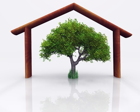 representation of the concept of environmental and economic home photo