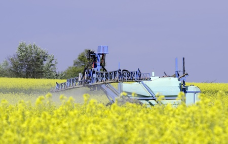 rapeseed flowers in season against a factory background Stock Photo - 9843043