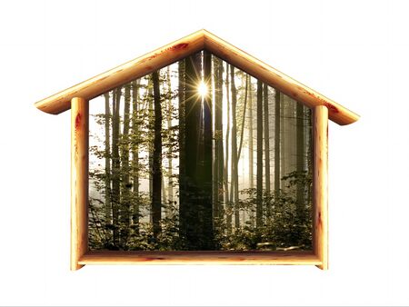 arbre: wood house