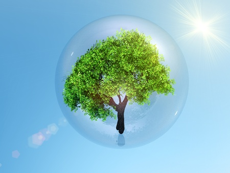 bubble with a tree inside Stock Photo