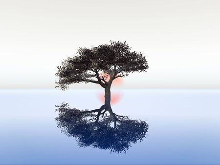 illustration of serenity and zen