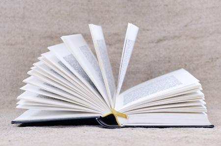 open book Stock Photo - 10627233