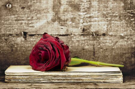 Long stem red rose on a pile of old documents. Wood board background