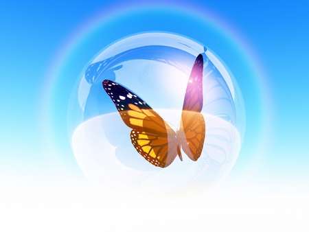 a butterfly in a bubble photo