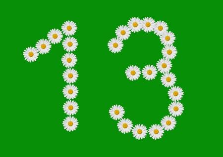 number thirteen made in daisy flower Standard-Bild