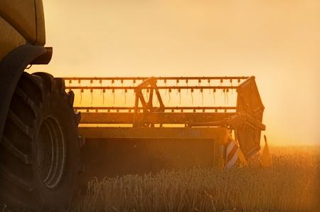a combine harvester photo