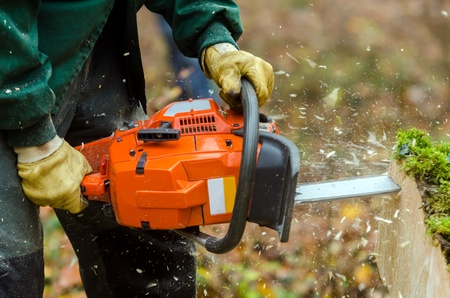a chainsaw in action