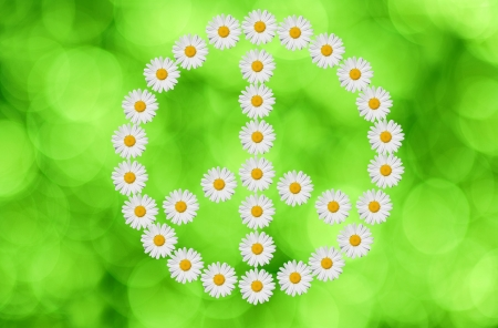 flowerpower: the peace and love  symbol made in daisy flower on green background Stock Photo