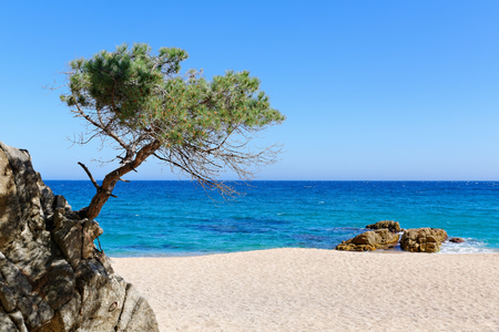 sand beach on the Costa Brava in spain Standard-Bild