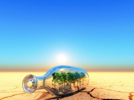 a birch forest inside a glass bottle